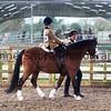 Xmas Side Saddle Show 010