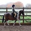 Xmas Side Saddle Show 026