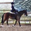 Xmas Side Saddle Show 013