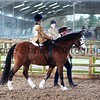 Xmas Side Saddle Show 009