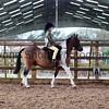 Xmas Side Saddle Show 002