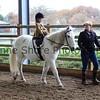 Xmas Side Saddle Show 006