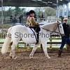 Xmas Side Saddle Show 008