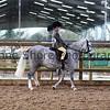 Xmas Side Saddle Show 003