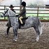 Xmas Side Saddle Show 022