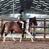 Xmas Side Saddle Show 011