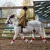 Xmas Side Saddle Show 015