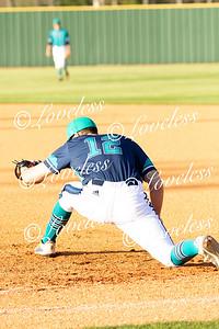 Siegel_Baseball_011