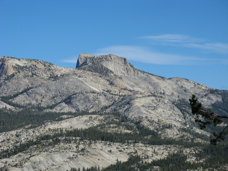 That's an interesting looking peak on the north side of 120.  Turn's out it is Tuolumne Peak, and I'll climb it tomorrow.