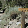 First trail junction shortly after crossing the bridge over North Fork Big Pine Creek. (Taken 8/2/08)