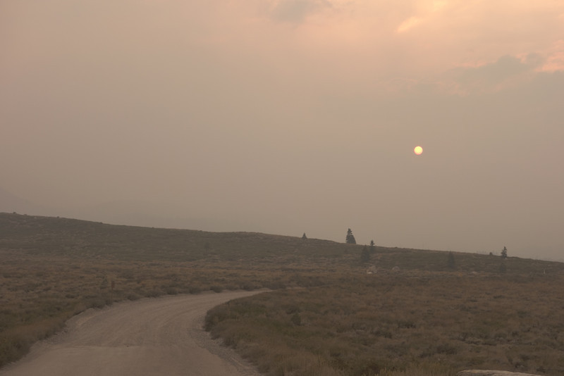 Sun at 4:00 pm heading west on Sherwin Creek Rd.  Mammoth Mountain is in the smoke somewhere