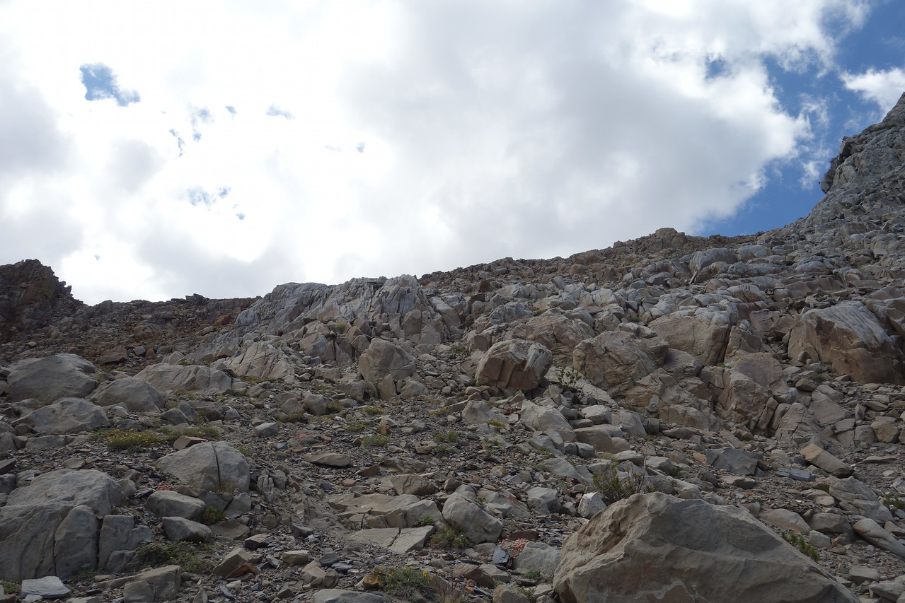 Summit ahead, right.  South edge of the large outcropping is seen on right of frame.