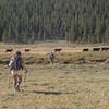Free range hikers