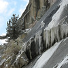Close up on icicles