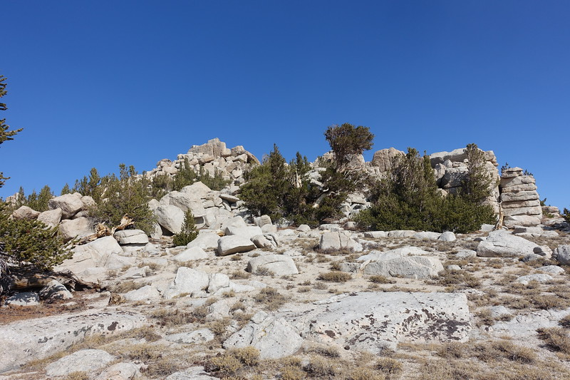 We skirted the south side of Owens (right), and then approached the summit block from the backside (east)