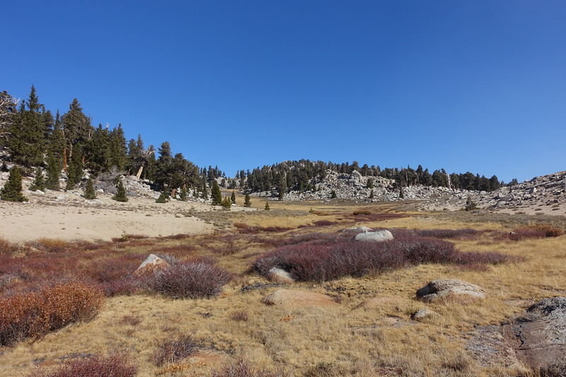 We crossed the meadow here and headed up the drainage on the left to get to Owens.