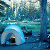 What's this?  It's my camp at Pine Lake, Aug 1982.  That's me on the log.