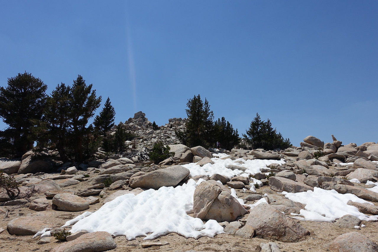 Filled our water containers w/ snow on this hot day.  Smatko's bump in between the trees; we climbed the right, lower bump