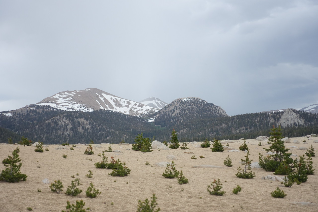 By now, thunder had been rolling for about 30 min.  Trailmaster (L) an Cirque Peak in the distance