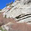 Infamous pine marks the start of the Ebersbacher Ledges