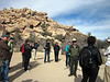 Next day directors and entourage (hangers-on like me) go for a field trip in nearby Joshua Tree National Park