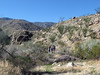 Below Mt. San Jacinto