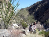 Next day, hiking in Martinez Canyon