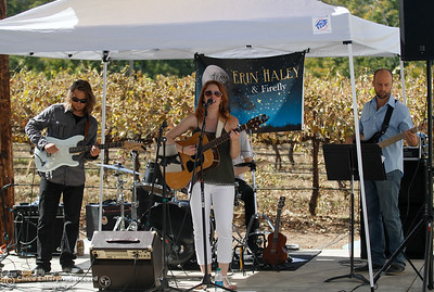 Erin Haley & Firefly play as guests sample wine at Nesseré Vineyard during the Sierra Oro Farm Trail Passport Weekend Saturday October 8, 2016 in Chico, California. (Emily Bertolino -- Enterprise-Record)