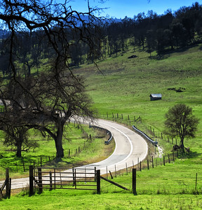 Kemmerer___Latrobe Road in the Sierra Foothills