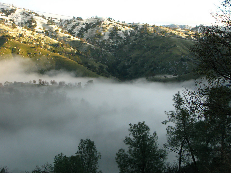 early morning fog over the river