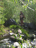 Rachel at first stream crossing