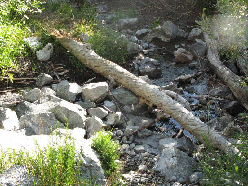 first stream crossing is minimal