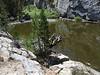 stagnant pond below Finger/Brainerd Lakes