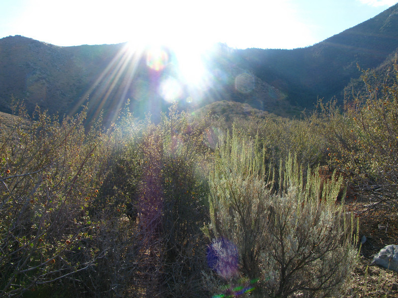 hiking into the sun