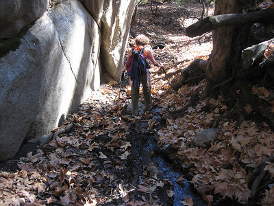 muddy stream leading up to the overhang