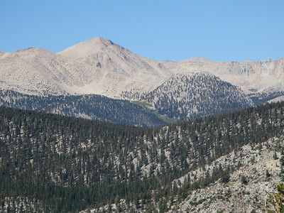 Trailmaster and Cirque(in background) and South Fork Meadow