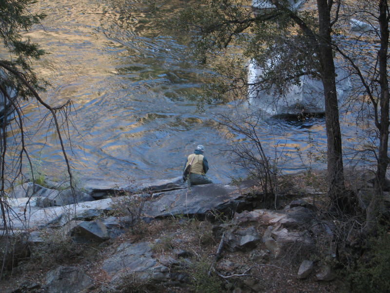 fisherman by the bank