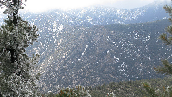 looking south towards the PCT