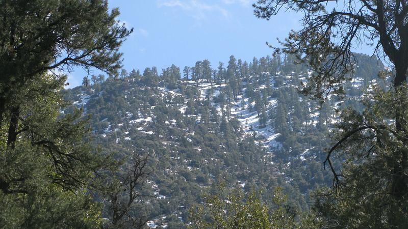 snow on Lamont