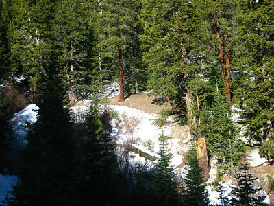 the North Fork turnoff is dry of snow in parts