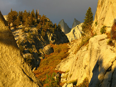 fall colors and the Needles