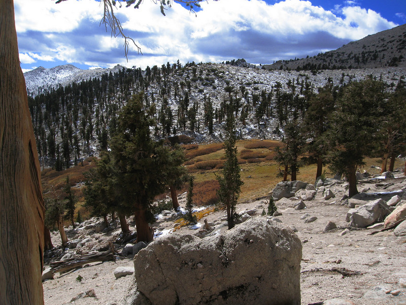 meadow below Trailmaster