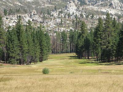 Manter Meadow
