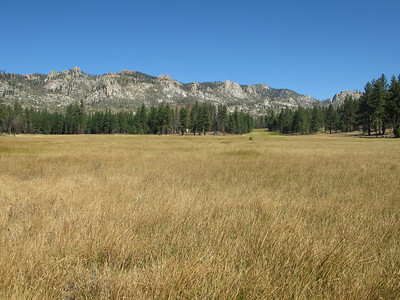 Manter Meadow
