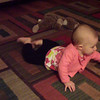 excited about backward crawling