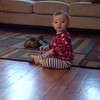 cat toy playing