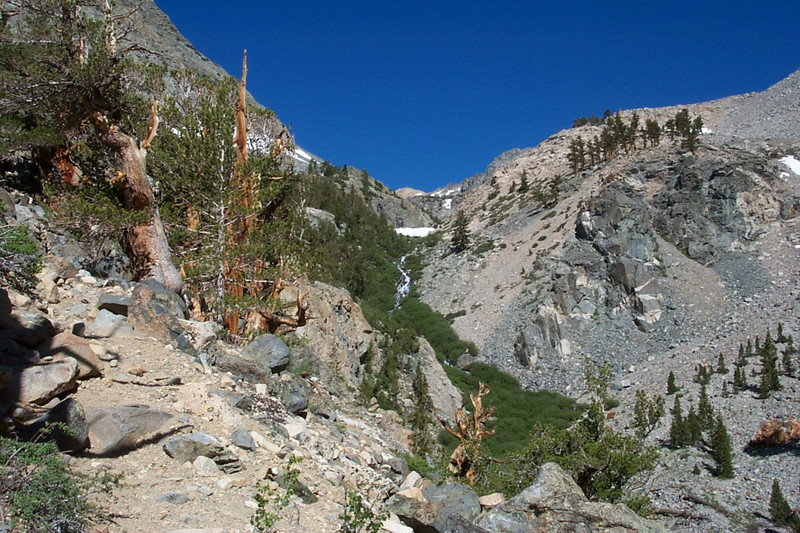 Following the canyon that leads up to Golden Trout Lake.