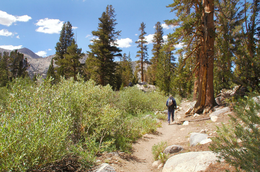 On the Bishop Pass Trail.