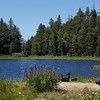 Grouse Lake