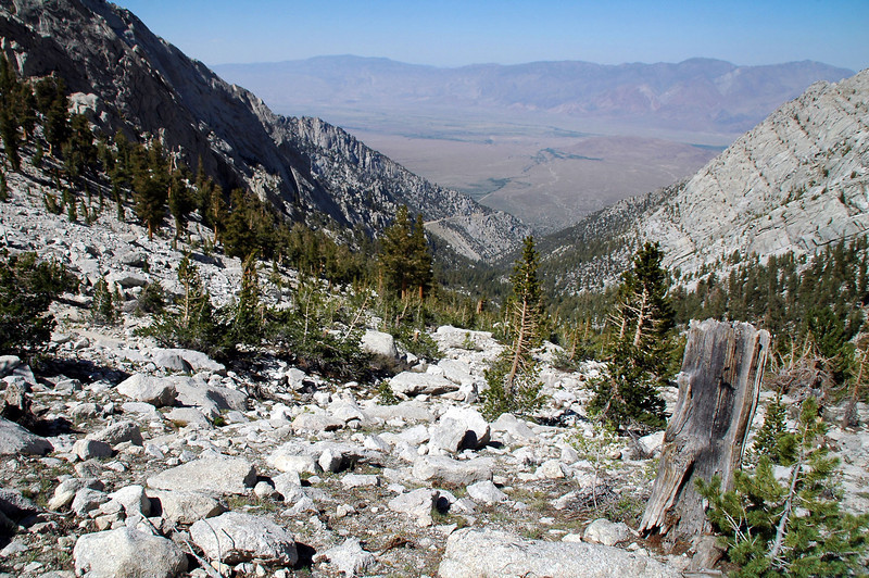 looking down the canyon into the Owens Valley from about 10,500 feet.